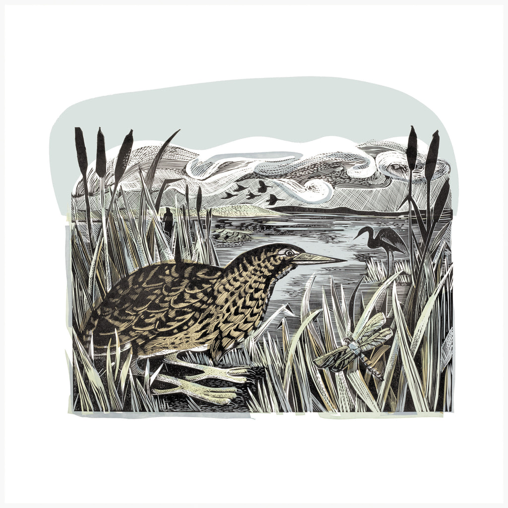 Bittern and Wetlands, Linocut Print by Angela Harding