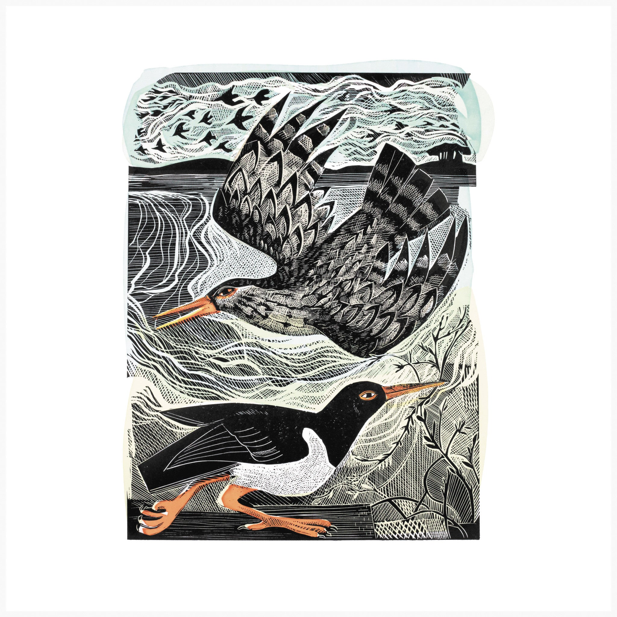 Redshank and Oystercatcher, Linocut Print by Angela Hardin