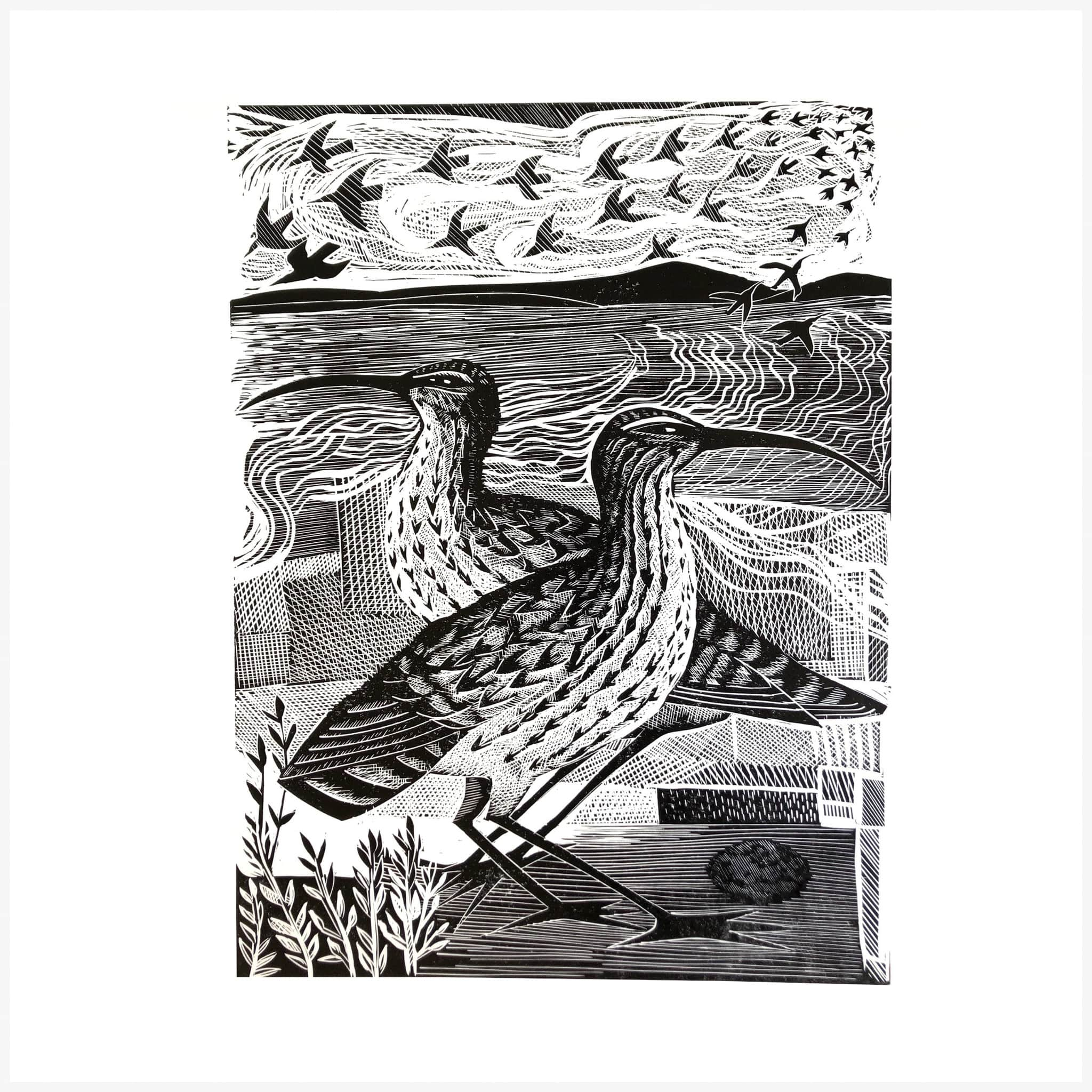 Two Curlews print in black and white by Angela Harding