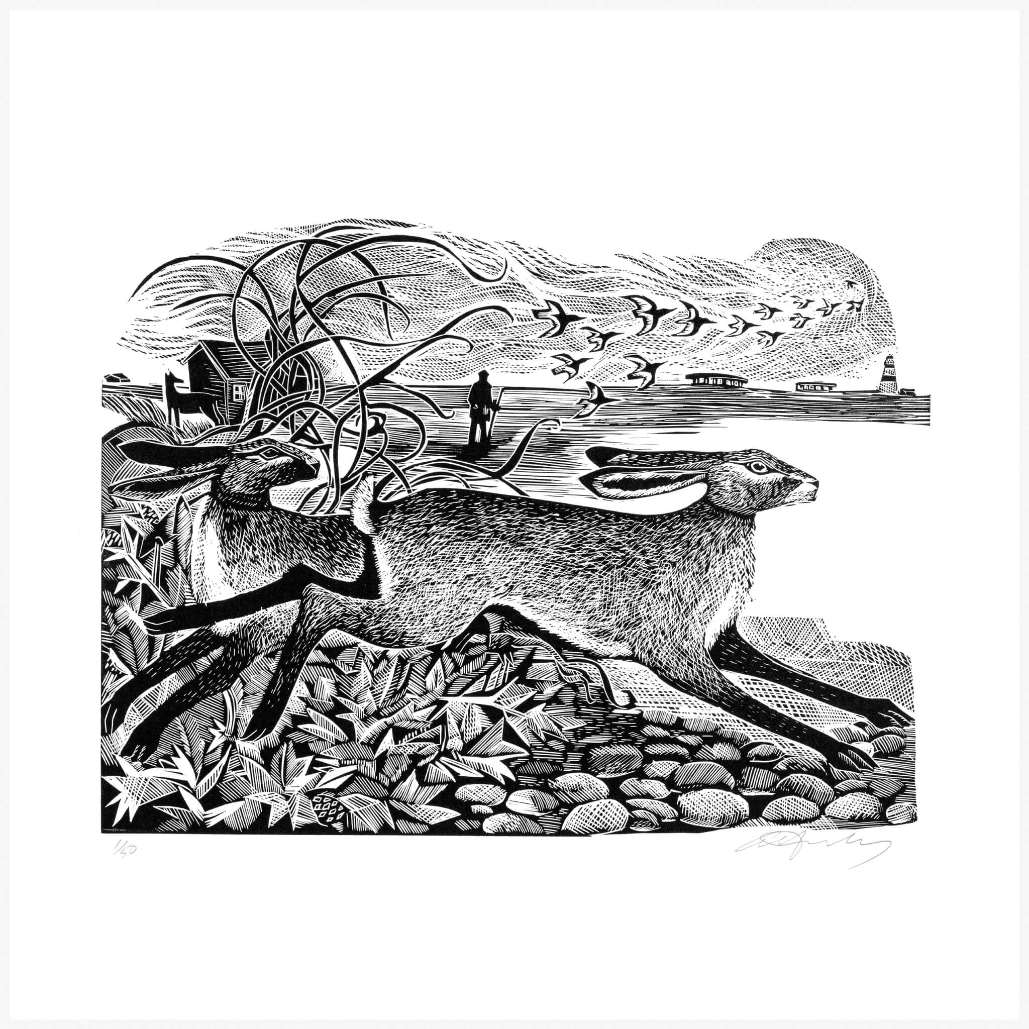 Orford Hares Print by Angela Harding