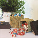 Olive Knick Knacks Box Big