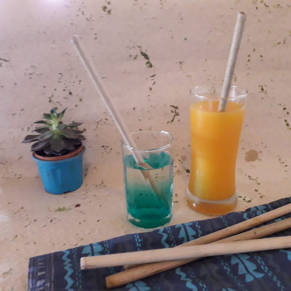 Bamboo Straw Pack of 5