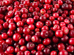 CRANBERRIES 24/12 OZ BAGS