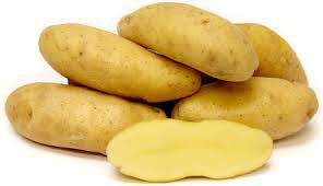 YELLOW FINGERLING POTATO
