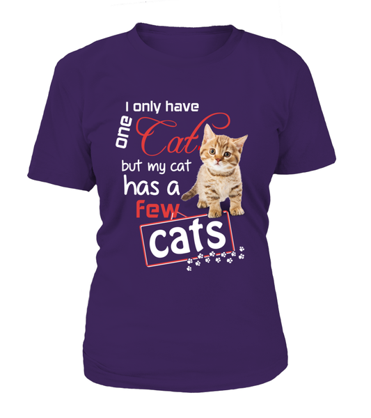I Only Have One Cat Shirt - Giggle Rich - 5