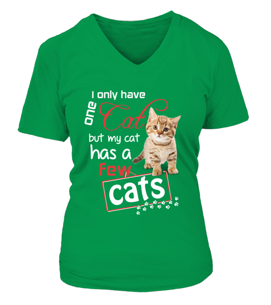 I Only Have One Cat Shirt - Giggle Rich - 3