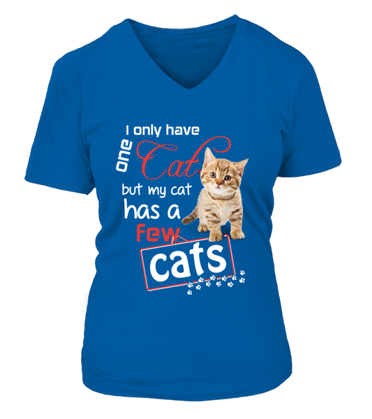I Only Have One Cat Shirt - Giggle Rich - 2