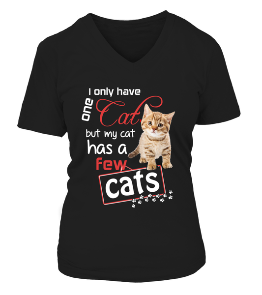 I Only Have One Cat Shirt - Giggle Rich - 11