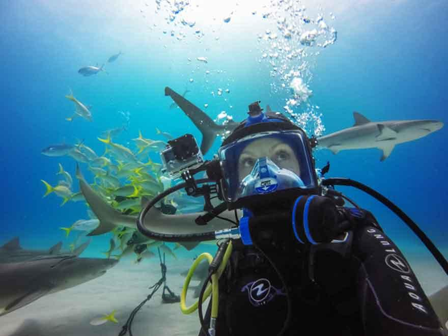 GoPro Uses CamDo Solutions' Underwater WIFI Extension Cable to Livestream Shark Dive via Periscope