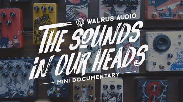 The Sounds in our Heads: Walrus Audio Mini Doc