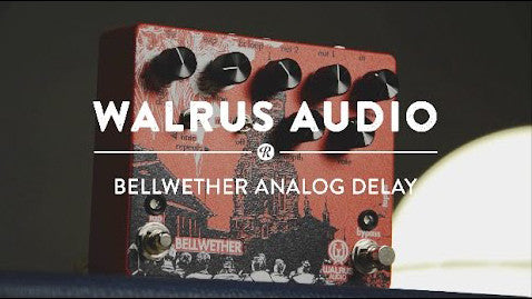 Walrus Audio Bellwether Analog Delay Pedal Demo