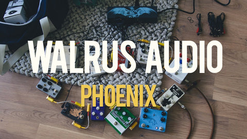 Walrus Audio Phoenix - Unboxing and Test by Livingroom Gear