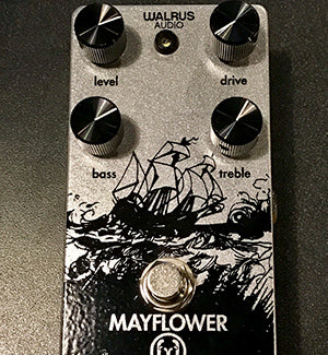 Silver Sparkle Mayflower