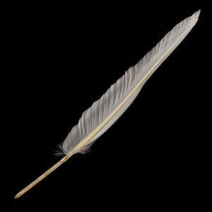 Goose Feather Quill for marbling - Da Vinci Chalk Paint Creative painting