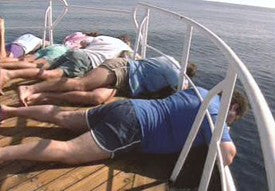 How to prevent seasickness for How to not get seasick on a fishing boat