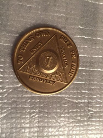 Set of 15 Alcoholics Anonymous 1 Month Recovery Coin Chip Medallion Token AA - RecoveryChip