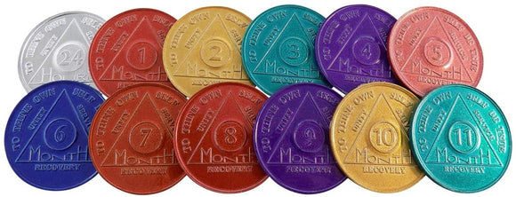 Set of 12 Aluminum AA Medallions Month 1 2 3 4 5 6 7 8 9 10 11 and 24 Hours
