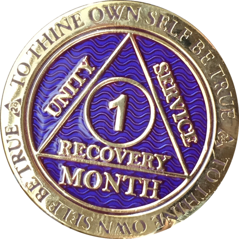 1 - 11 Month AA Medallion Reflex Purple Gold Plated Sobriety Chip Coin