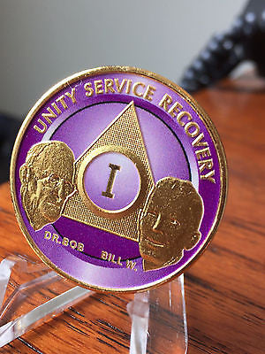 AA Founders Chip Gold Plated Purple Alcoholics Anonymous Medallion Any Year 1 - 65 - RecoveryChip