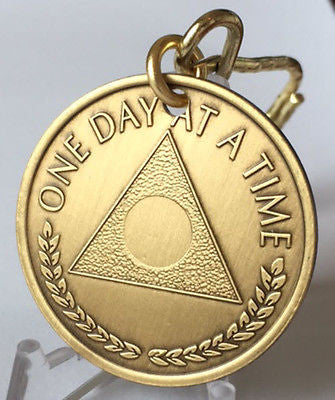 AA Alcoholics Anonymous One Day At A Time Serenity Prayer Chip Key Chain Tag - RecoveryChip