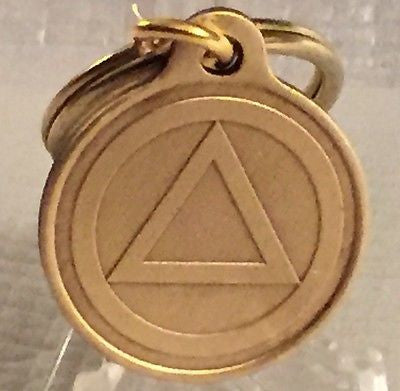 Circle Triangle Alcoholics Anonymous Bronze Key Chain AA NA Keychain Serenity - RecoveryChip