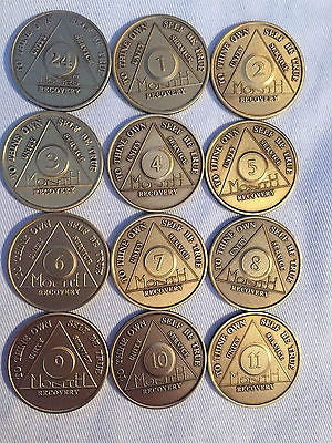 Set of 12 Monthly Bronze AA Alcoholics Anonymous Medallion Month 1 - 11 & 24hrs - RecoveryChip