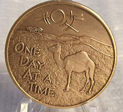 Camel Desert Scene ODAAT One Day At A Time Camel Poem Bronze Sobriety Medallion - RecoveryChip