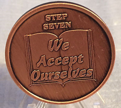 Step 7 Copper Twelve Step Medallion AA NA Recovery 12 Steps Serenity Prayer Chip - RecoveryChip
