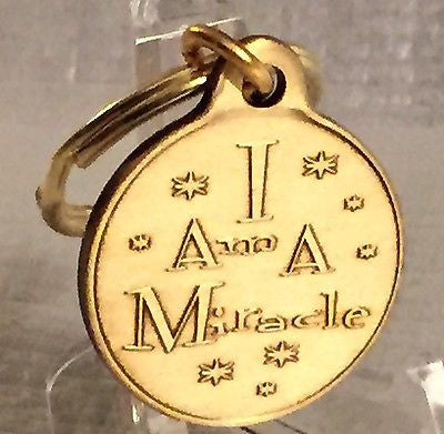 Butterfly I Am A Miracle Bronze Key Chain AA NA Keychain Fob Tag - RecoveryChip