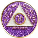 AA Medallion Purple Glitter Tri-Plate Sobriety Chip Year 1 - 45 - RecoveryChip