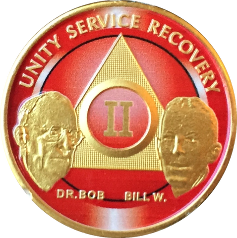 AA Founders Red Gold Plated Any Year 1 - 65 Medallion Alcoholics Anonymous Chip Bill W Dr Bob