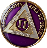 1 - 10 Year AA Medallion Metallic Purple Tri-Plate Sobriety Chip