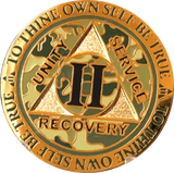 1 2 3 4 5 and 10 Year Reflex Camo Gold Plated AA Medallion Camouflage Sobriety Chip - RecoveryChip