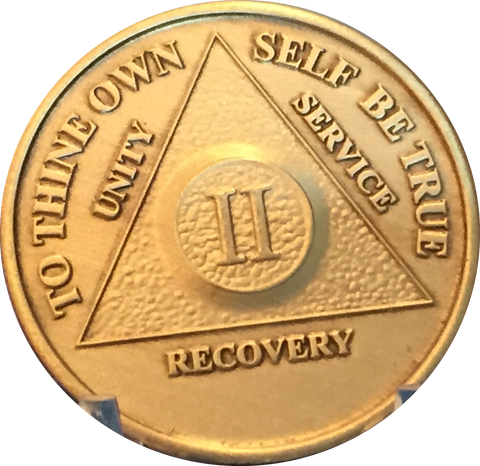 Bulk Wholesale Lot of 25 Bronze AA Medallions Year 1 - 65 Alcoholics Anonymous Sobriety Chips - RecoveryChip