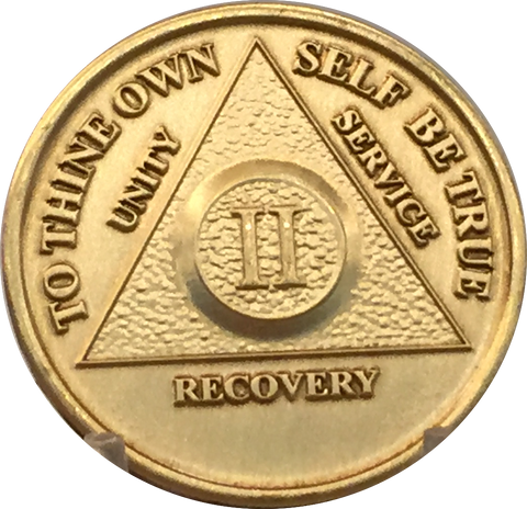 AA Purple Glitter 11 Year Coin Tri-Plate Alcoholics Anonymous Medallion Display