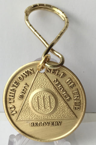 AA Medallion Bronze Keychain Month 1 2 3 4 5 6 7 8 9 10 11 or 18 Keytag - RecoveryChip