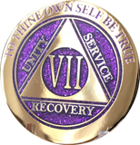 1 - 10 Year AA Medallion Elegant Glitter Purple Gold & Silver Plated Sobriety Chip - RecoveryChip