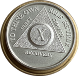 24 Hours .999 Fine Silver AA Alcoholics Anonymous Medallion - RecoveryChip