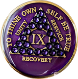 Crystallized AA Medallion Purple Velvet Tri-Plate Sobriety Chip Year 1 - 50 - RecoveryChip