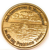 Acceptance Bronze AA Medallion Page 449 - RecoveryChip