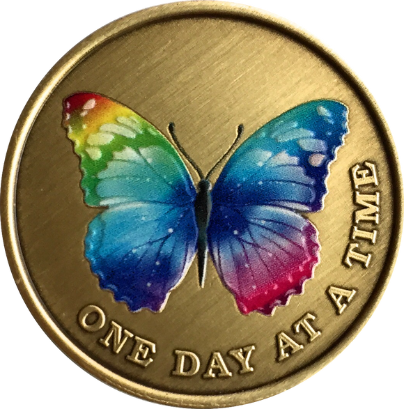 Color Rainbow Butterfly One Day At A Time Medallion Serenity Prayer Bronze Chip - RecoveryChip