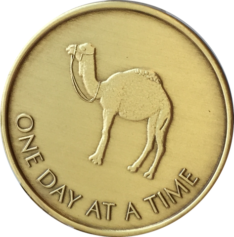Camel One Day At A Time Greatest Possession 24 Hours Ahead Bronze Medallion Sobriety Chip - RecoveryChip