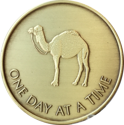 Camel One Day At A Time Serenity Prayer Medallion Bronze Sobriety Chip Coin - RecoveryChip