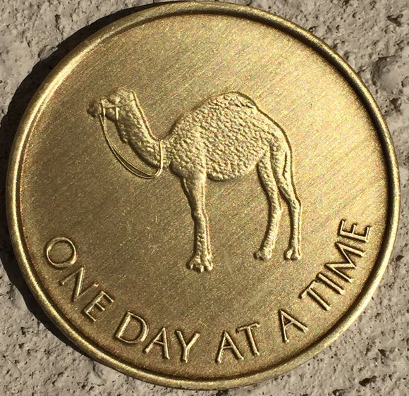 Camel One Day At A Time - Serenity Prayer Bronze AA Alcoholics Anonymous Medallion Chip - RecoveryChip
