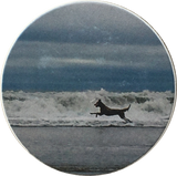 "Beach Dog Playing In Surf Absorbent Stone Car Auto Coaster 2.5"" St Augustine Cup Holder - RecoveryChip"
