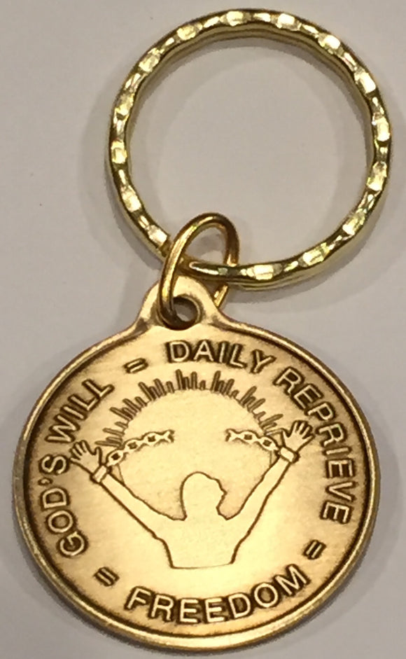 God's Will = Daily Reprieve = Freedom AA Medallion Keychain - RecoveryChip