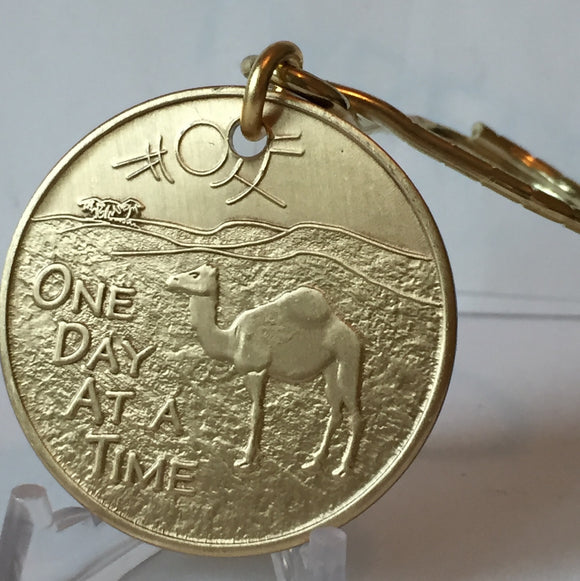 Camel Desert Scene AA Medallion Key Chain Sobriety Chip Key Tag Bronze - RecoveryChip