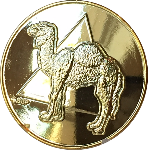Camel Circle Triangle 22k Gold Plated AA Medallion Chip Sobriety Token - RecoveryChip