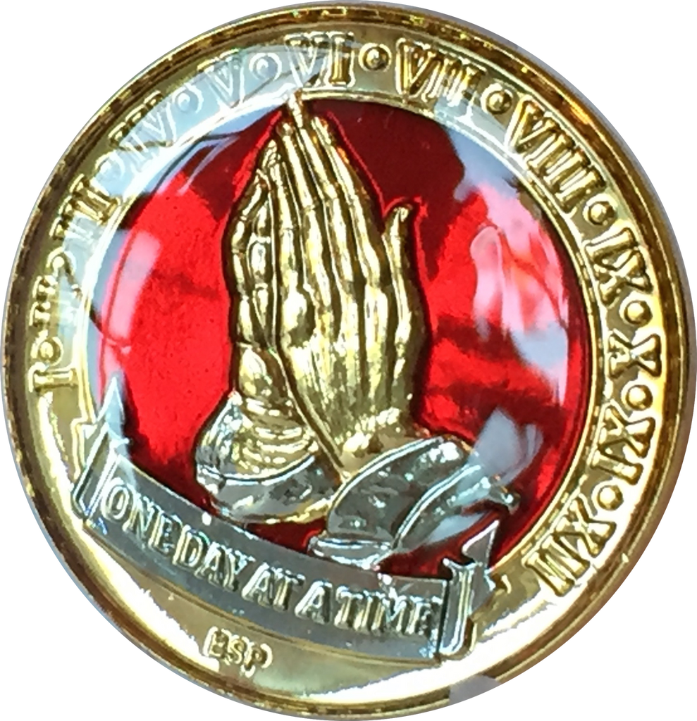 1 Year AA Medallion Red Gold Plated Alcoholics Anonymous Sobriety Chip Coin One