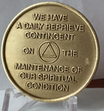God's Will = Daily Reprieve = Freedom - AA Alcoholics Anonymous Spiritual Condition Bronze Sobriety Medallion RecoveryChip - RecoveryChip